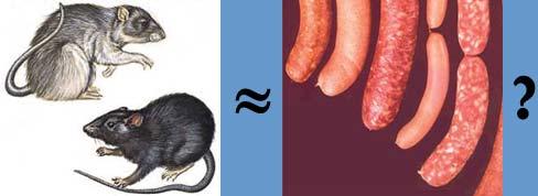 rats_and_sausage.jpg