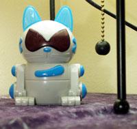 webcat.jpg